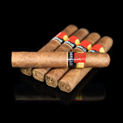 E.P. Carrillo Core Natural Encantos