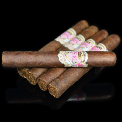 Cygara Alec Bradley Its A Girl