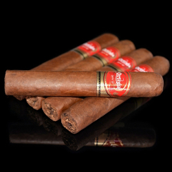 Ortega Serie D No 20 Natural