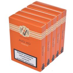 Cygara Avo XO Notturno (25 cygar)
