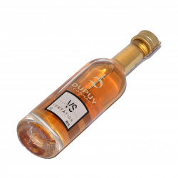 Cognac Dupuy VS Tentation Mini 40% (0,05L)
